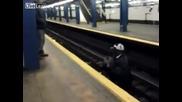 Мъж спасява котка паднала при релсите на метростанция