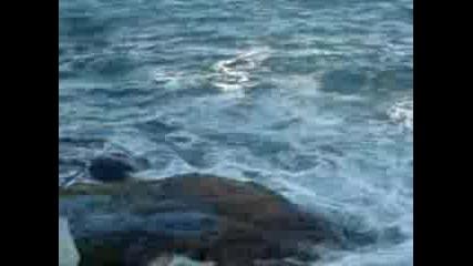 Морето Щеше Да Ги Погълне