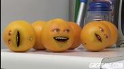 Annoying Orange 5 More Annoying Orange *hd*