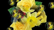 ✿♫✿ Цветя с релаксираща музика! ... ... ( Kevin Kern music) ... ...✿♫✿