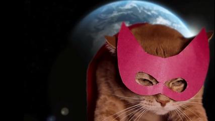 Суперкот [supercat]