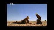 Али Баба - bg audio - част 1 Btv