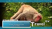 Travel TV - Гледайте - Поредица - Пътеводител на пътешественика/ Watch - Traveler's Guide