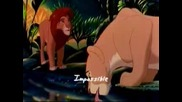 Lion King - Can You Feel The Love Subbed