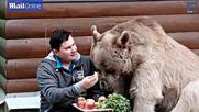 Невероятно! Руско семейство стои на масата с мечка, тежка 136 кг