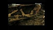Discovery channel -vodni Chudovi6ta