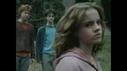 Хари Потър - Fighter (хърмаяни)