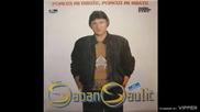 Saban Saulic - Zasto nismo zajedno - (Audio 1990)