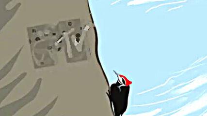 Mtv Arabia Woodpecker 360p.mp4