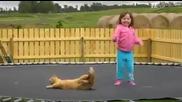 Коте и дете на батут ( Смях )