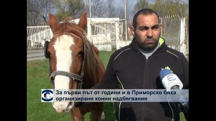 За първи път от години и в Приморско бяха организирани конни надбягвания