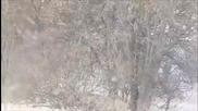 Осенняя роса - Вьюга, ты моя подруга - виелице ти моя приятелко - текст