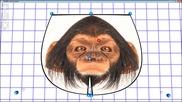 №24231 - Контролни точки на NURBS повърхност