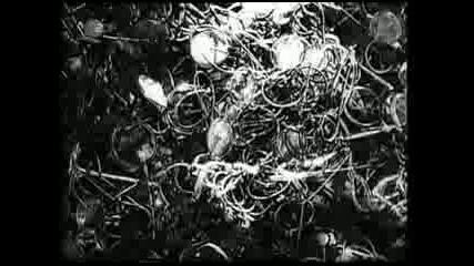 Аушвиц - Освобождението