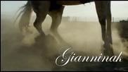 ** Превод ** Matia Bazar Cavallo Bianco
