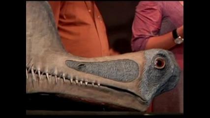 Останки на гигантски птерозавър бяха открити в Националния музей в Рио  де Жанейро