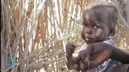 Nigerians Fleeing Lake Chad in Niger In Dire Need of Food and Water