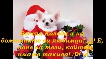 Merry Christmas и за конкурса на sladichk0