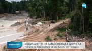 Изсичането на Амазония - с най-високо ниво от 12 години насам