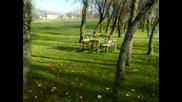 Piknik Masasi Way 2014 Hd