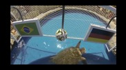 Костенурката – оракул предрече победа за Бразилия