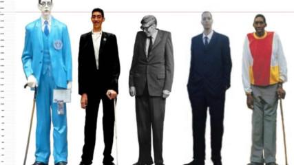 Най-високите хора в света