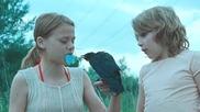 Момчето и гарджето (2012)