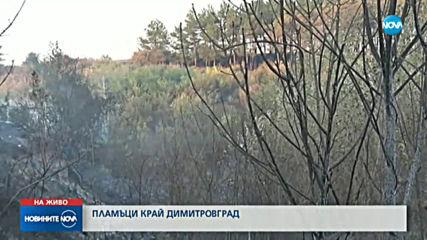 Пожар край Димитровград
