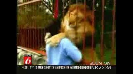 Доброто Лъвче