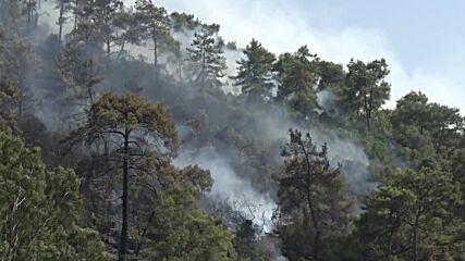 Turkey: Wildfires continue in Marmaris as blaze spreads across coast