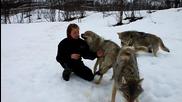 Приятелството между Вълка и Човека