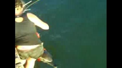 Спасяване на делфин в Ахтопол