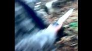 lov na bursuk