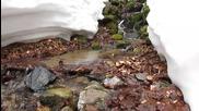 Зимен поток - резерват Джинджирица