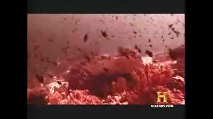 Седемте признаци на Апокалипсиса част 7