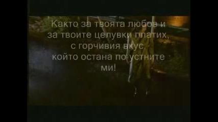 Pareos - Избра да съсипеш съдбата ми... - превод