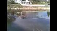 Езерце В Бързия
