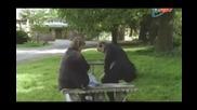 Убийства в Мидсъмър (българско Аудио) сезон 11 епизод 2
