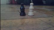 Стандартни пулчета за игра на шах