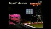 Дупка В Стената - Смешно Японско Шоу