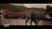 Честни Трейлъри - Twilight 4: Breaking Dawn