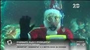 Дядо Коледа посети рибите в щатския аквариум