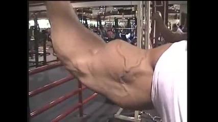 Bodybuilder Chris Bennett biceps Guns ..