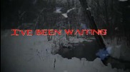 Allen Lande - Lady of Winter ( Lyric Video 2014 )