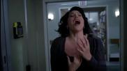 Grey's Anatomy Callie - The Story
