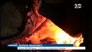 Новините на Нова (01.11.2014 - централна)
