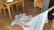 Girls Table Cloth Pull Fail