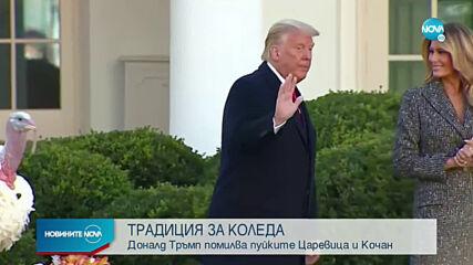 Доналд Тръмп помилва пуйките Царевица и Кочан