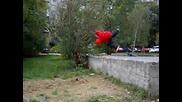 Timmy Flip