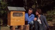 Как да си наливаме мед директно от кошера ?